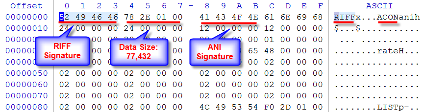 ANI animation file - signature inspection